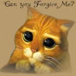 Ho un caratteraccio, lo so! Perdonami per averti ferito!!