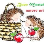 Buon martedì, amore!
