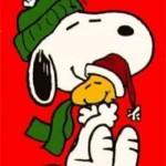 A Natale, un abbraccio in più.. AUGURONI!