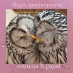 Dedica per l'anniversario di matrimonio dei genitori