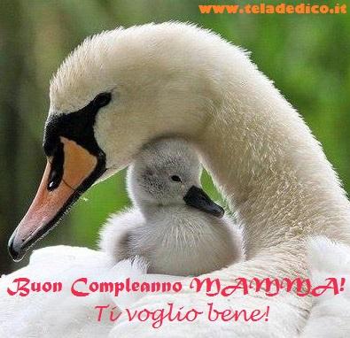 Buon compleanno mamma! Ti voglio bene!!